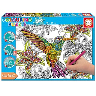 Colouring Hummingbird